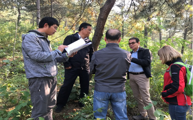 APFNet Contributes to Beijing Water Source Protection: Positive Feedback on a Terminal Evaluation of Rehabilitation and Management of Degraded Forests in Miyun Reservoir Watershed, Beijing [2015P2-MY]