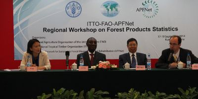 thumb Regional_Workshop_on_Forest_Products_Statistics_successfully_held-_final104